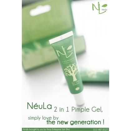 2 in 1 Pimple Gel 15g